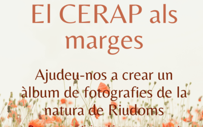 #laculturaacasa: El CERAP als marges